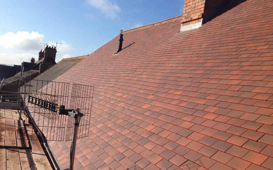 Do You Need A Roof Replacement In Time For The Summer?